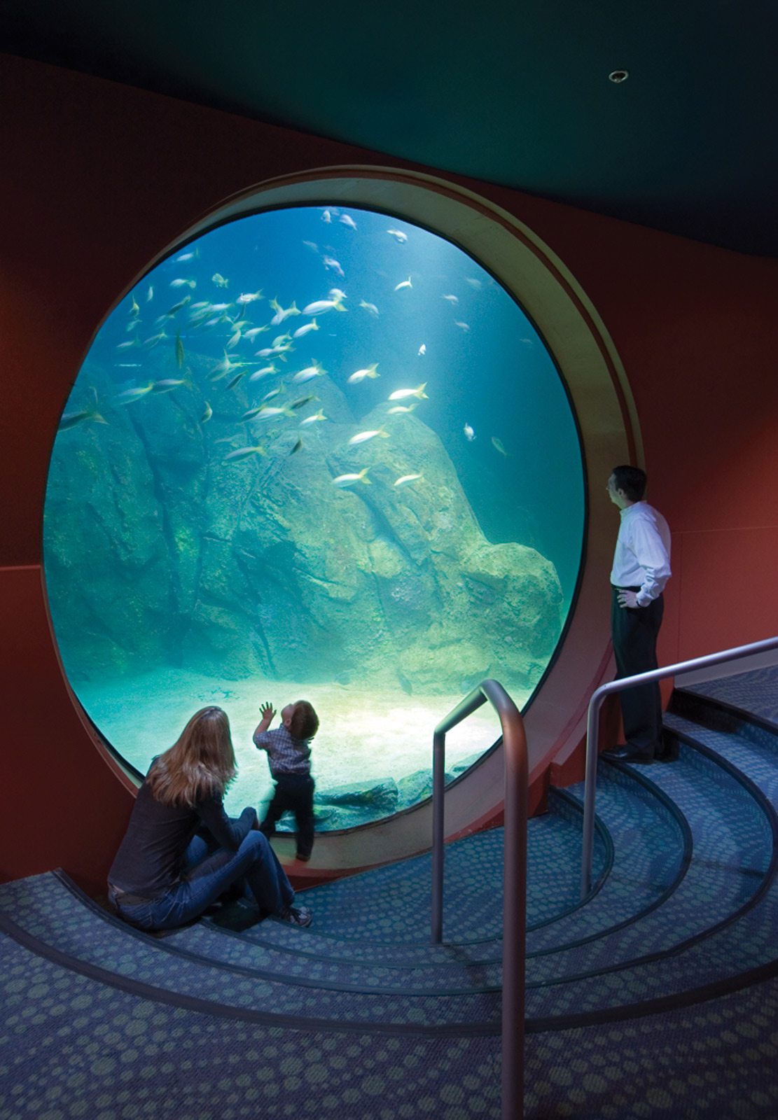 New Jersey State Aquarium Bliss Fasman